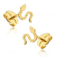 Naušnice od 14K žutog zlata - sjajna gmižuća zmija, urezana površina