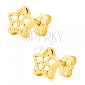 Naušnice od žutog 14K zlata – zvijezda sa motivom zvijezde sedefastog dizajna